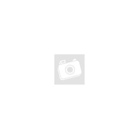 PR-PTR401V-HD